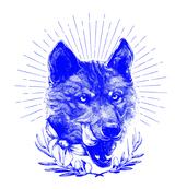 KUCCINI logo